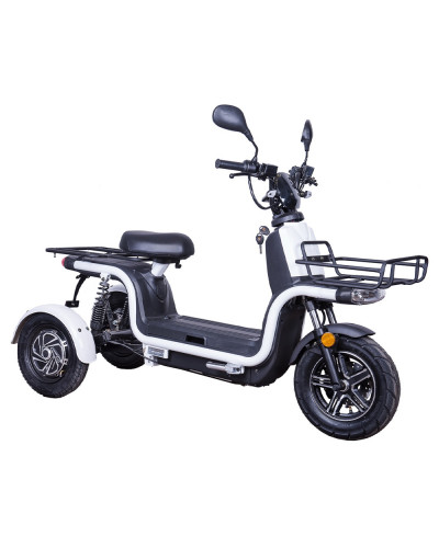 Moped electric ZT-29-A EXPRESS EEC